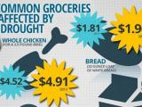 The Affect Rising Food Prices will Have on Senior Housing in 2013
